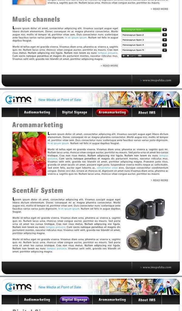 Prosta strona + mailing dla IMS.